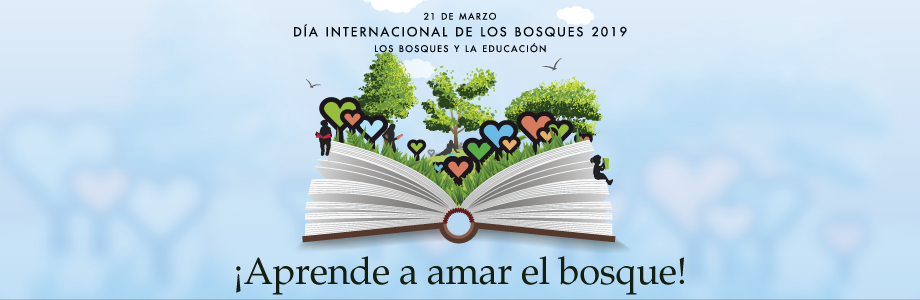 Día internacional bosques
