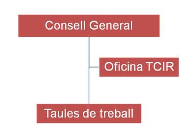 Órganos de gobierno de la TCIR