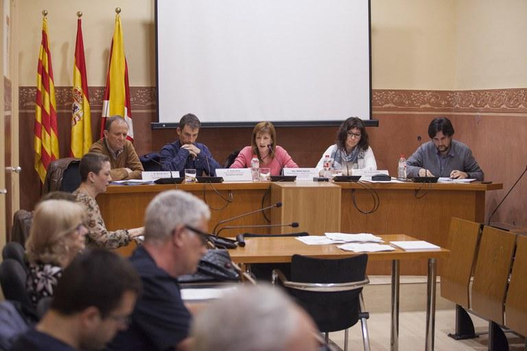 Consell Municipal de Salut_sessió constitució